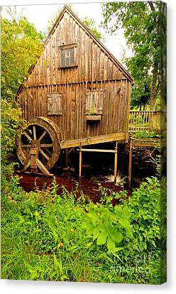 Nathaniel Thomas Mill Canvas Print by Catherine Reusch  Daley
