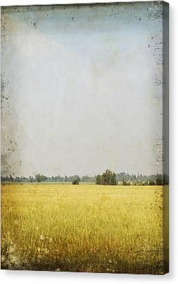 Nature Painting On Old Grunge Paper Canvas Print by Setsiri Silapasuwanchai