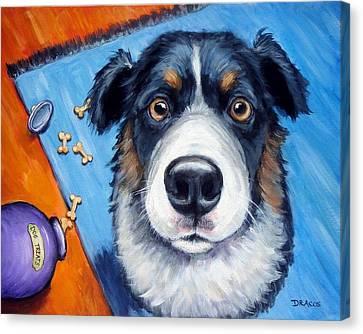Naughty Australian Shepherd Canvas Print by Dottie Dracos