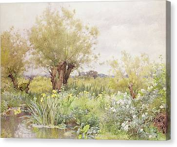 Near Shiplake Canvas Print by Alfred Parsons