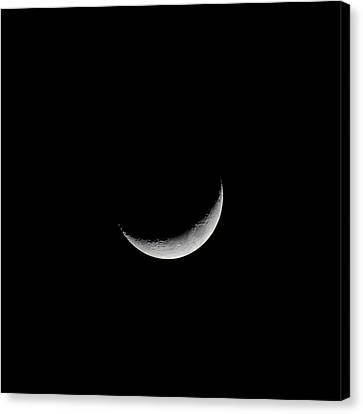 New Moon Canvas Print by CP Cheah
