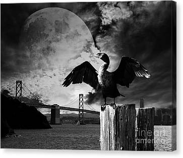 Night Of The Cormorant . Black And White Canvas Print by Wingsdomain Art and Photography