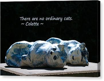 No Ordinary Cats Canvas Print by Dagmar Ceki