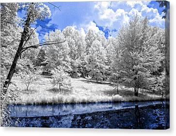 Nobob Pond Ir Canvas Print by Amber Flowers