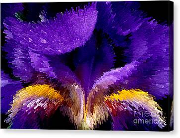Not Your Average Iris Canvas Print by Paul W Faust -  Impressions of Light