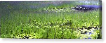 Ode To Monet Canvas Print by Bob Retnauer