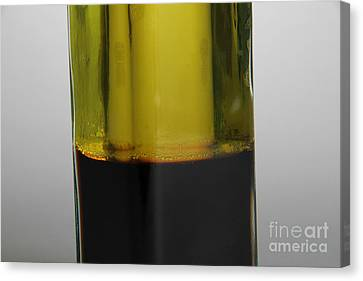 Oil And Vinegar Canvas Print by Photo Researchers