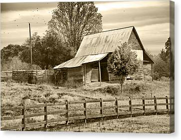 Old Barn Sepia Tint Canvas Print by Susan Leggett