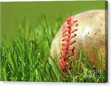 Old Baseball Glove On The Grass Canvas Print by Sandra Cunningham