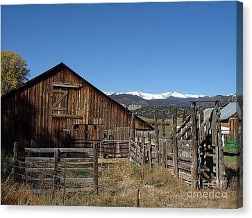 Old Colorado Barn Canvas Print by Donna Parlow