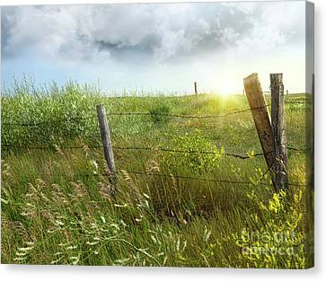Old Country Fence On The Prairies Canvas Print by Sandra Cunningham