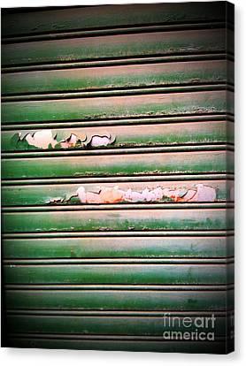 Old Garage Door Canvas Print by Eena Bo