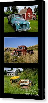 Old Guys 6 Canvas Print by Idaho Scenic Images Linda Lantzy