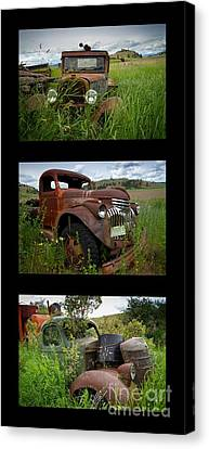 Old Guys 7 Canvas Print by Idaho Scenic Images Linda Lantzy