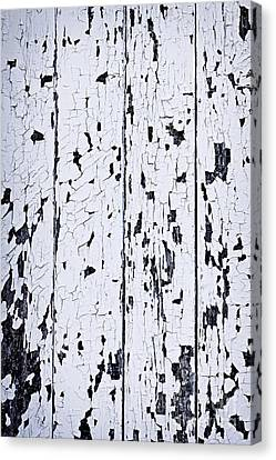 Old Painted Wood Abstract Canvas Print by Elena Elisseeva