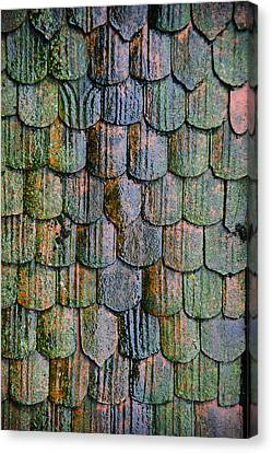 Old Roof Tiles Canvas Print by Jen Morrison