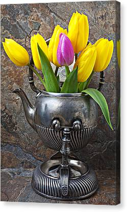 Old Tea Pot And Tulips Canvas Print by Garry Gay