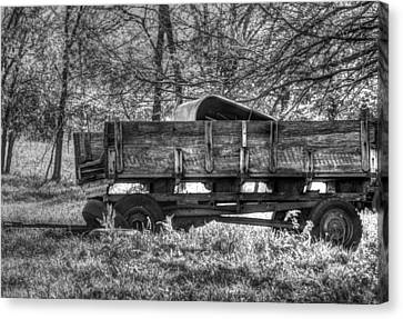 Old Wagon Canvas Print by Lisa Moore