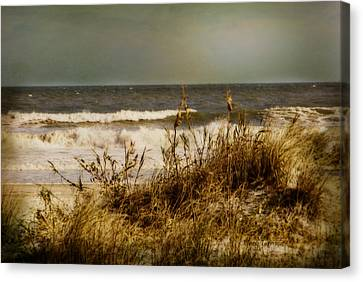 On The Beach Canvas Print by Mary Timman