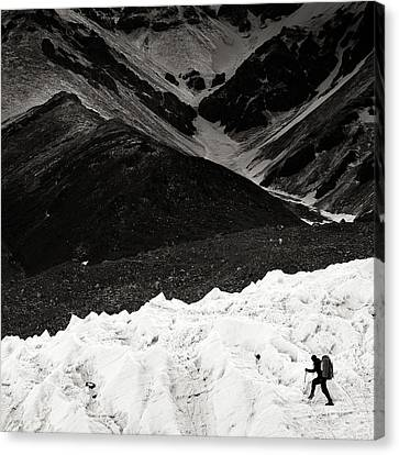 On The Glacier Canvas Print by Konstantin Dikovsky