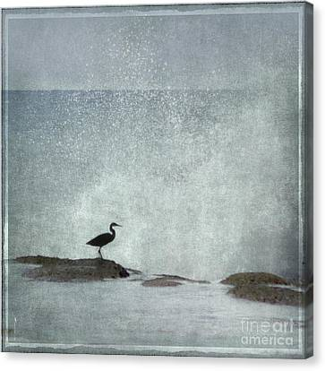 On The Rocks Canvas Print by Linde Townsend