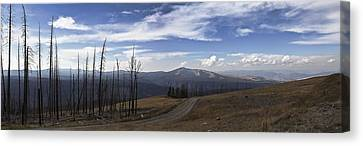 On Top Of The Mountains In Yellowstone National Park Canvas Print by Joe Gee