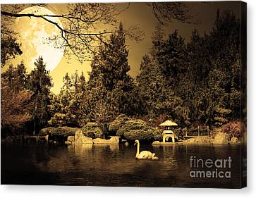 Once Upon A Time Under The Moon Lit Night . Golden Cut . 7d12782 Canvas Print by Wingsdomain Art and Photography