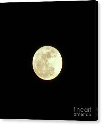 Only The Moon Canvas Print by Elizabeth Hernandez