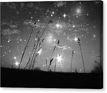 Only The Stars And Me Canvas Print by Marianna Mills