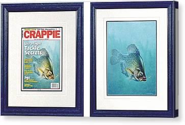 Open Water Crappie Canvas Print by JQ Licensing