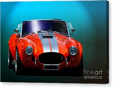 Orange Cobra Canvas Print by Stuart Row