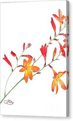 Orange Flowers Canvas Print by Muna Abdurrahman