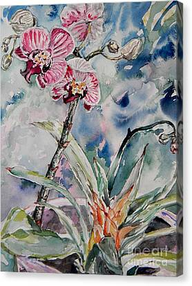 Orchids On Blue Canvas Print by Emily Michaud