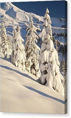 Oregon, United States Of America Snow Canvas Print by Craig Tuttle