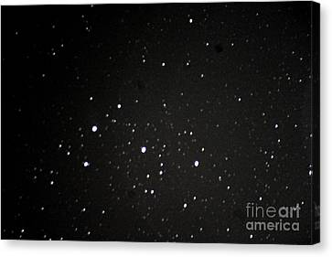 Orions Belt Canvas Print by Stephen Whisman
