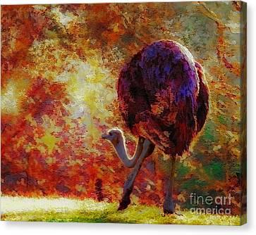 Ostrich II Canvas Print by Arne Hansen