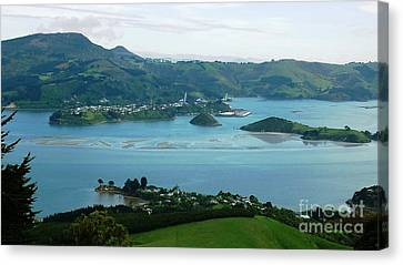 Otago Harbour Canvas Print by Therese Alcorn