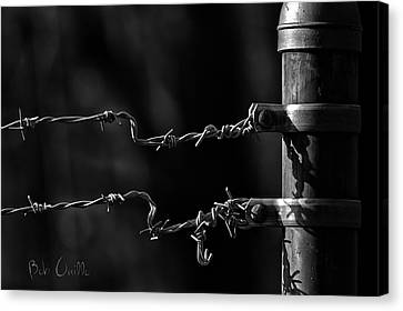 Other Side Of The Fence Canvas Print by Bob Orsillo