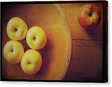 Out Of The Bowl Canvas Print by Toni Hopper