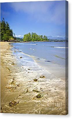 Pacific Ocean Coast On Vancouver Island Canvas Print by Elena Elisseeva