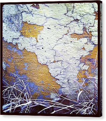 Painted Concrete Map Canvas Print by Anna Villarreal Garbis