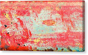 Painted Metal Canvas Print by Tom Gowanlock
