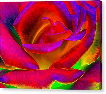 Painted Rose 1 Canvas Print by Will Borden