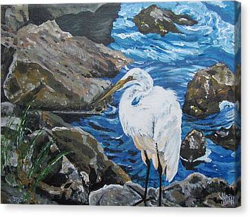 Painting  Sharon's Heron On The Rocks Canvas Print by Judy Via-Wolff