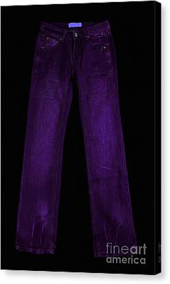 Pair Of Jeans 4 - Painterly Canvas Print by Wingsdomain Art and Photography