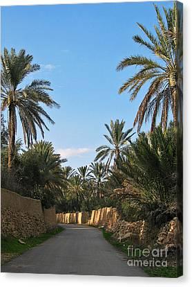 Palm Gardens In Palmyra Oasis Canvas Print by Issam Hajjar