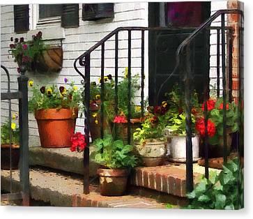 Pansies And Geraniums On Stoop Canvas Print by Susan Savad