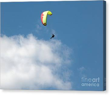 Paraglider Canvas Print by Cindy Singleton