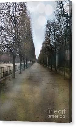 Paris Nature - The Tuileries Row Of Trees  Canvas Print by Kathy Fornal