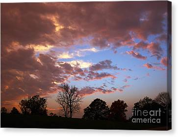 Park At Sunset Canvas Print by Susan Isakson